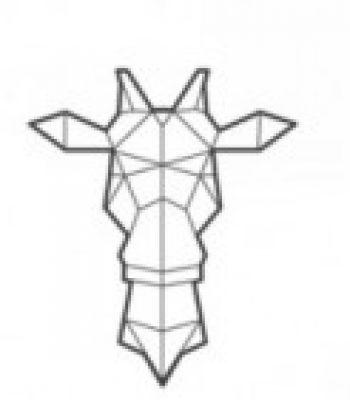 Illustration du profil de BIKOM